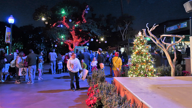 Jungle Bells event at the San Diego Zoo