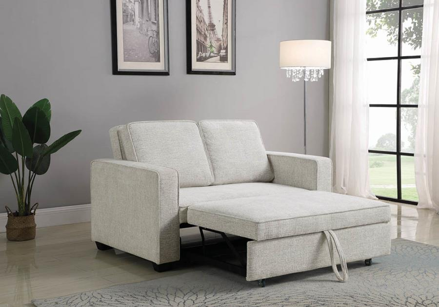 Sofa Pullout Bed